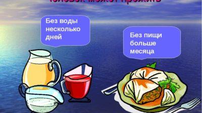 Сколько человек может прожить без еды?