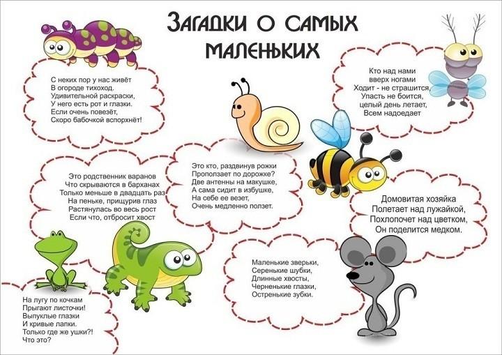 загадки для детей