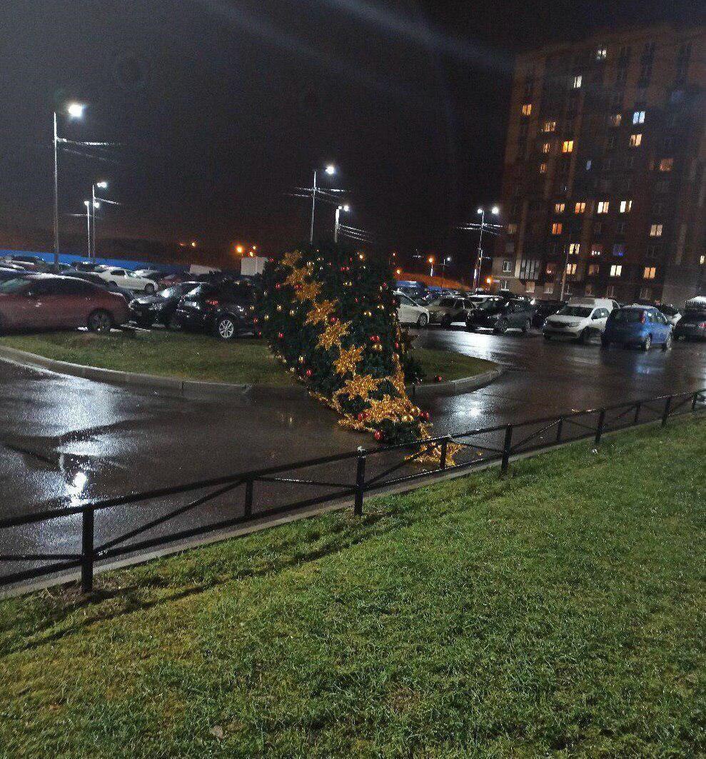 В Санкт-Петербурге ветер свалил Новогодние наряженные елки на улице 19.12.2019 смотреть видео