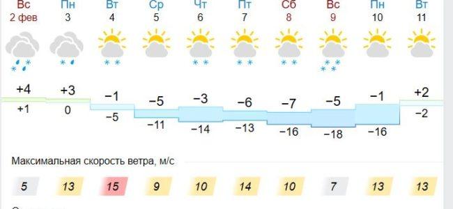 В Калуге в конце недели обещают -18 градусов мороза холода
