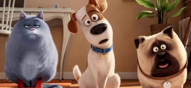 Тайная жизнь домашних животных 3 дата выхода мультфильма