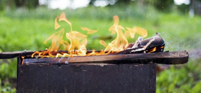 Россиянам запретят разводить костер и жарить шашлык у себя на участке